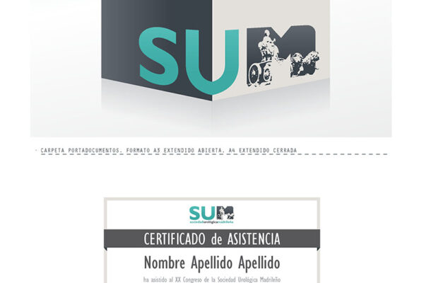 SUM_logo_AAFF01_Page_5